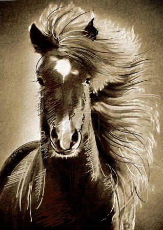 Painting purebred horse