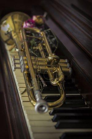 Flowers Trumpet Piano
