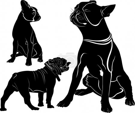 French Bulldog purebred dog standing in side view - vector silhouette isolated