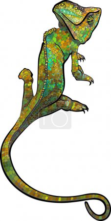 Chameleon.  stylized multi coloured Chameleon. Hand Drawn Reptile vector illustration in doodle style for tattoo or print