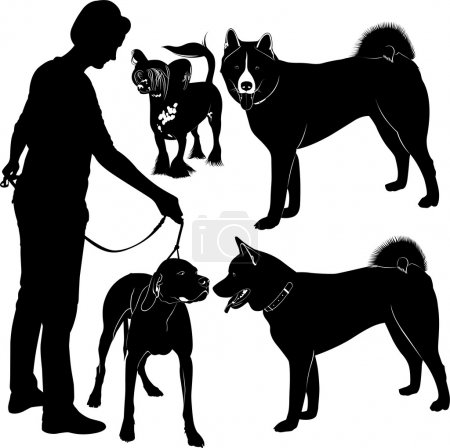 Silhouettes of dogs and owner