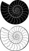 Shell seashells silhouette