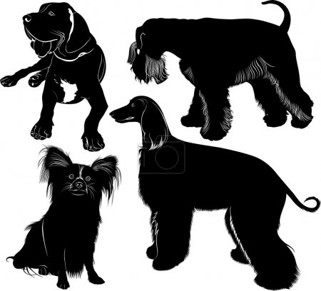 Silhouettes of three dogs