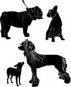 Silhouettes of dogs on white background