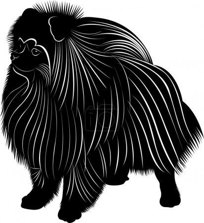 Spitz dog silhouette