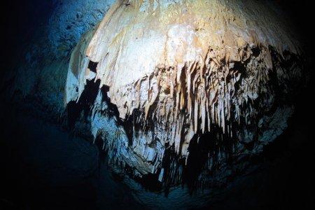 Stalactites of cenote underwater cave