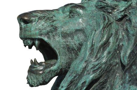 Bronze sculpture of a roaring lion