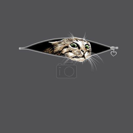 Illustration pour Głowa kota z zielonymi oczami - image libre de droit