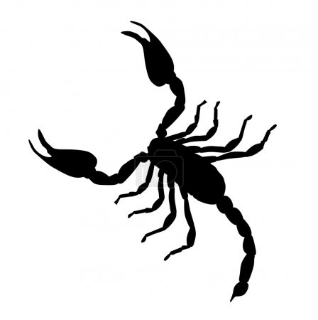 Illustration for Black Large Scorpion Silhouette Vector Illustration EPS10 - Royalty Free Image