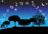 Set of  Zodiac Signs on night landscape background