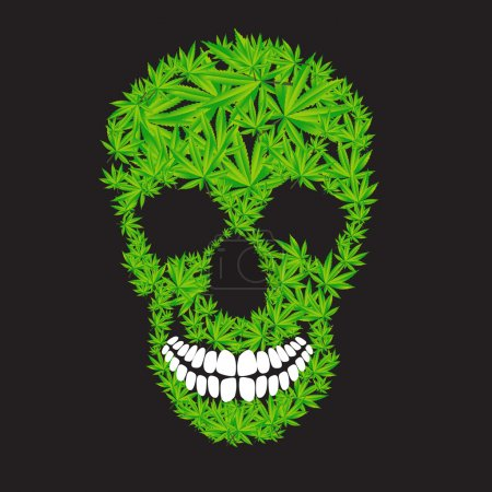 Illustration for Abstract Cannabis Skull Vector Illustration EPS10 - Royalty Free Image