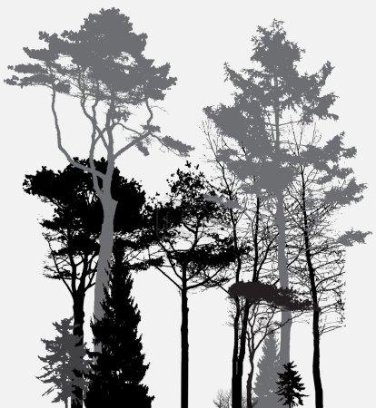 Photo pour Image de la nature. Silhouette d'arbre. Éco bannière. Illustration vectorielle. PSE10 - image libre de droit