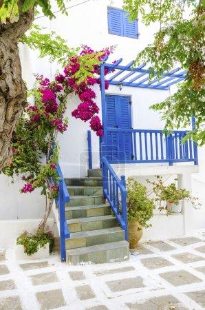 Photo pour Une vue très traditionnelle sur l'architecture de Chora, sur l'île grecque de Mykonos, en Grèce. Une porte bleue, une clôture et des fenêtres, un bougainvillier rouge et des fleurs devant une maison blanchie à la chaux et une rue pavée de galets . - image libre de droit