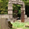 Jewish cemetery in Lodz. Burial place of industria...