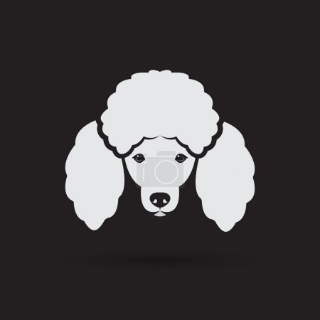 Vector image of an dog poodle face on a black background