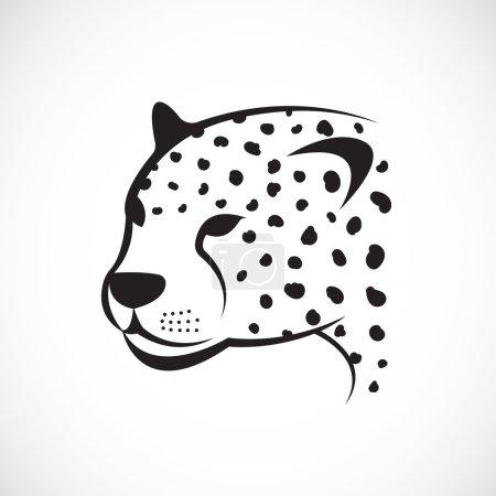 Illustration pour Image vectorielle d'un visage de guépard sur fond blanc. Visage vectoriel guépard pour votre design. - image libre de droit