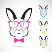 Vector image of a rabbits wear glasses on white background