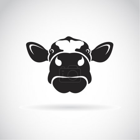 Illustration for Vector image of an cow head on white background - Royalty Free Image