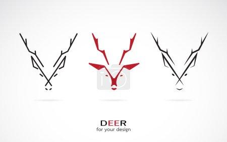 Illustration for Vector image of an deer design on white background - Royalty Free Image
