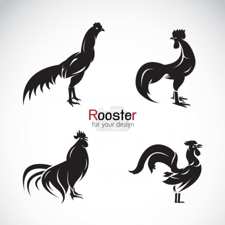 Vector group of rooster design on white background.