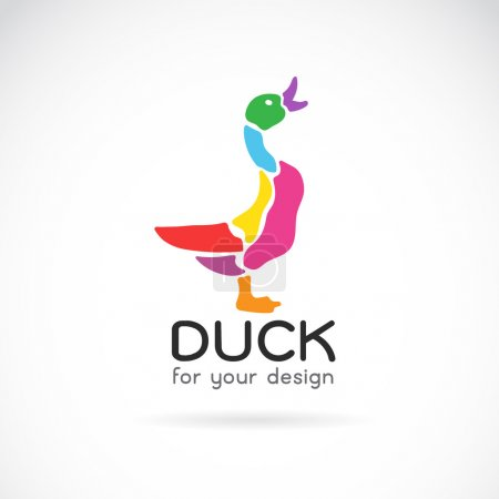 Vector image of a duck design on white background