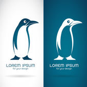 Vector image of an penguin design on white background and blue b