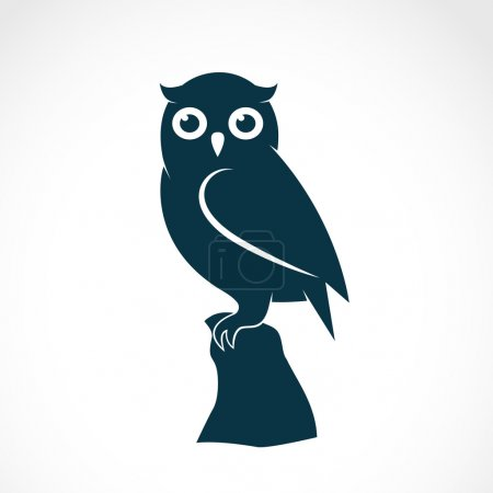 Vector image of an owl on white background