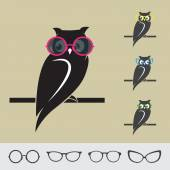 Vector images of owl and glasses on brown background
