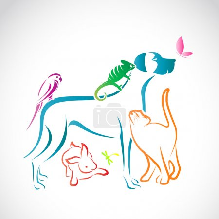 Illustration pour Groupe vectoriel d'animaux de compagnie - Chien, chat, perroquet, caméléon, lapin, papillon, libellule isolé sur fond blanc - image libre de droit