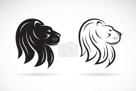 Vector image of an lions head design on white background