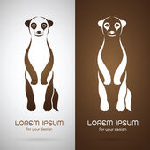Vector image of an meerkats design on white background and brown