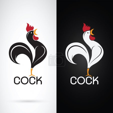 Vector image of a cock design on white background and black back