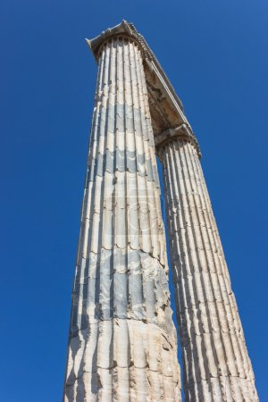 Column with flutes in the temple of Apollo in Didi...