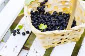 Plody rybízu v košíku proti z bílých dřevěných latí, selektivní zaměření