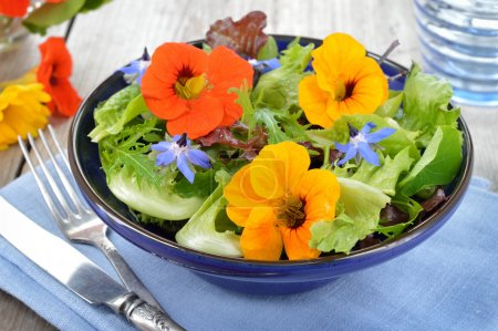 Salad with edible flowers nasturtium, borage.