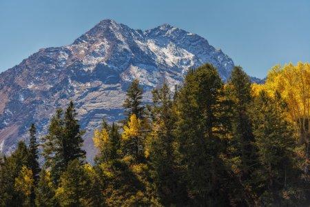 Photo pour Twin Peaks dans les montagnes Wasatch dans l'Utah aux États-Unis avec une couche de neige avec les trembles dorés devant . - image libre de droit