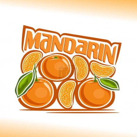 Vector illustration on the theme of  mandarin