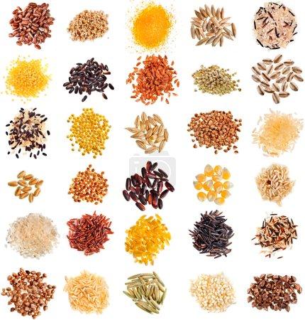 Photo pour Ensemble de céréales et de semences : Seigle, Blé, Orge, Avoine, Maïs, Lin, Millet, Riz, Sarrasin, Quinoa gros plan isolé sur fond blanc - image libre de droit