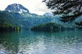 Mountain lake and evergreen coniferous forest, Durmitor, Montene