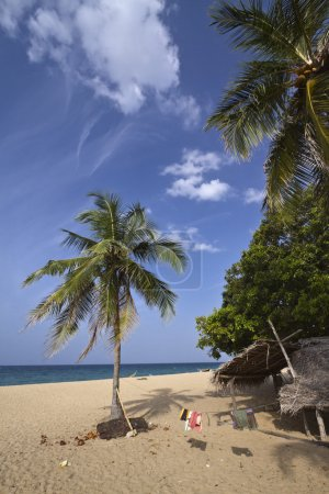 Paradise beach with fisherman hut