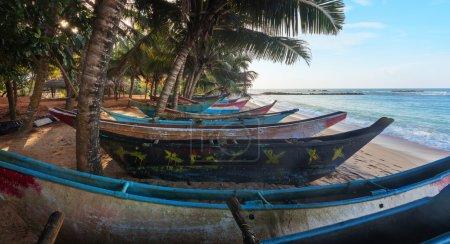 Photo pour Plage tropicale avec des palmiers et des bateaux de pêche au Sri Lanka, la plage de Mirissa, Asie - image libre de droit