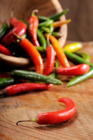 Foto de Una compañía di spezie ottimi por condire la cucina mediterranea - Imagen libre de derechos