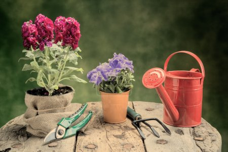 flowers and garden tools on wood table warm filter applied