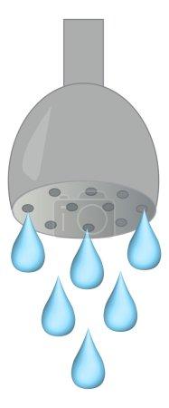 Shower head illustration