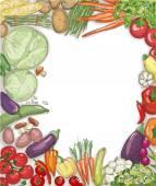Food vegetables frame against white backdrop
