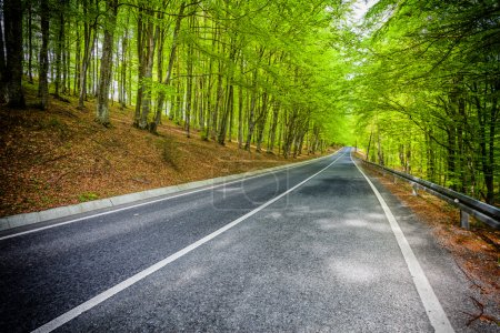 Photo for Dramatic straight road symbolizing the road to success. - Royalty Free Image