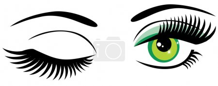 Illustration for Vector green eyes with long lashes and make up winking - Royalty Free Image