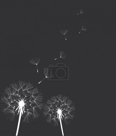 Dandelion Silhouette Card