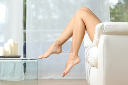 Photo for Profile of a perfect woman legs sitting on a couch at home hair removal concept - Royalty Free Image