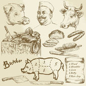 meat butcher - hand drawn collection
